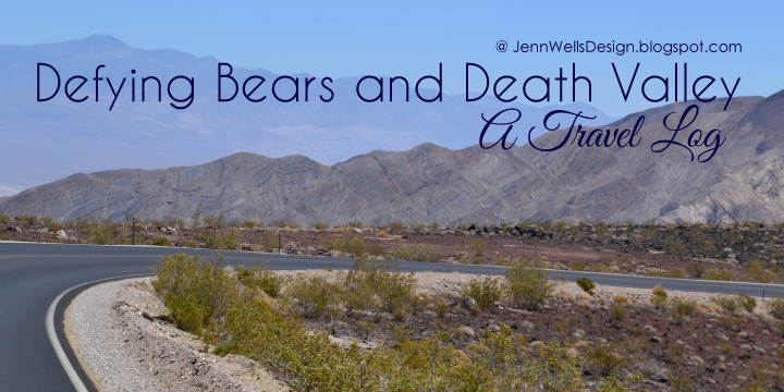 Defying Bears and Death Valley: A Travel Log | Business, Life & Design