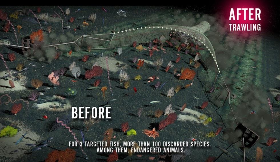 Cartaz da campanha 'Fishlove - Pare com a destruição do fundo do mar', mostra o fundo do mar antes e depois da pesca de arrasto. Crédito: Bloom