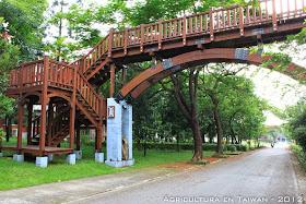 Puente de madera (28 fotos)