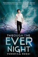 bookcover of THROUGH THE EVER NIGHT [Under the Never Sky #2] by Veronica Rossi
