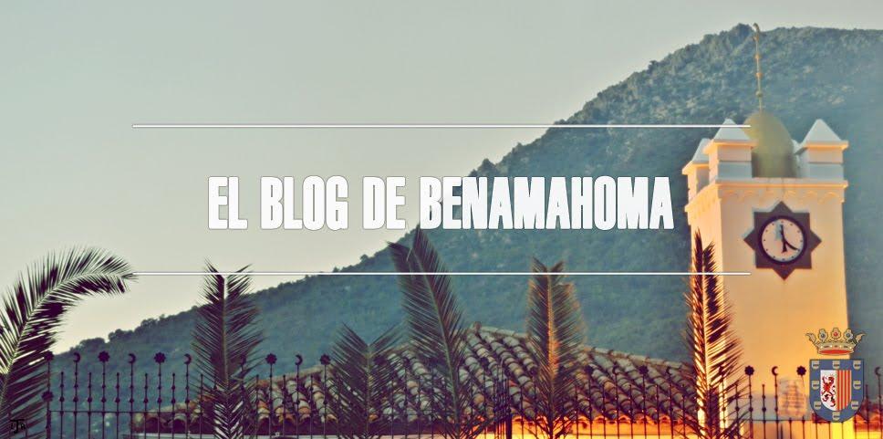 El Blog de Benamahoma