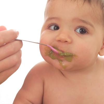 todo lo que tu bebe necesita para alimentarse después de los seis meses, como incluir en sus dietas carne, huevos y pescado.