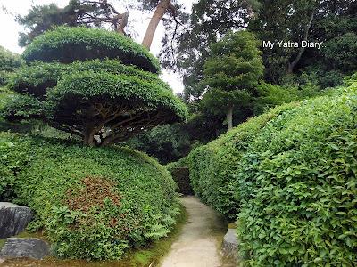 Beautiful garden at the Jikoin Zen Temple, Nara - Japan