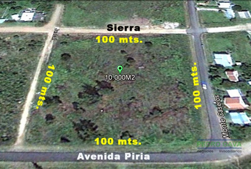 1 hectarea: