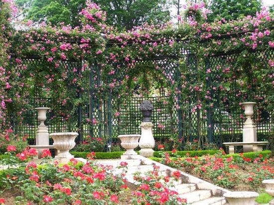 Matin lumineux roseraie de l 39 hay les roses for Garage renault l hay les roses