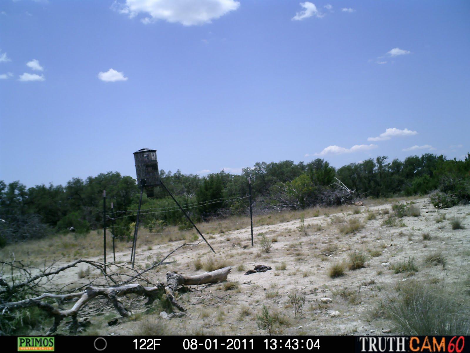 Wild Ed's Texas Outdoors: Texas Heat Fries Game Cameras