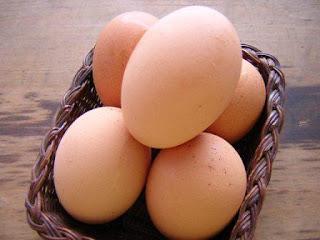Telur Dapat Menyebabkan Diabetes