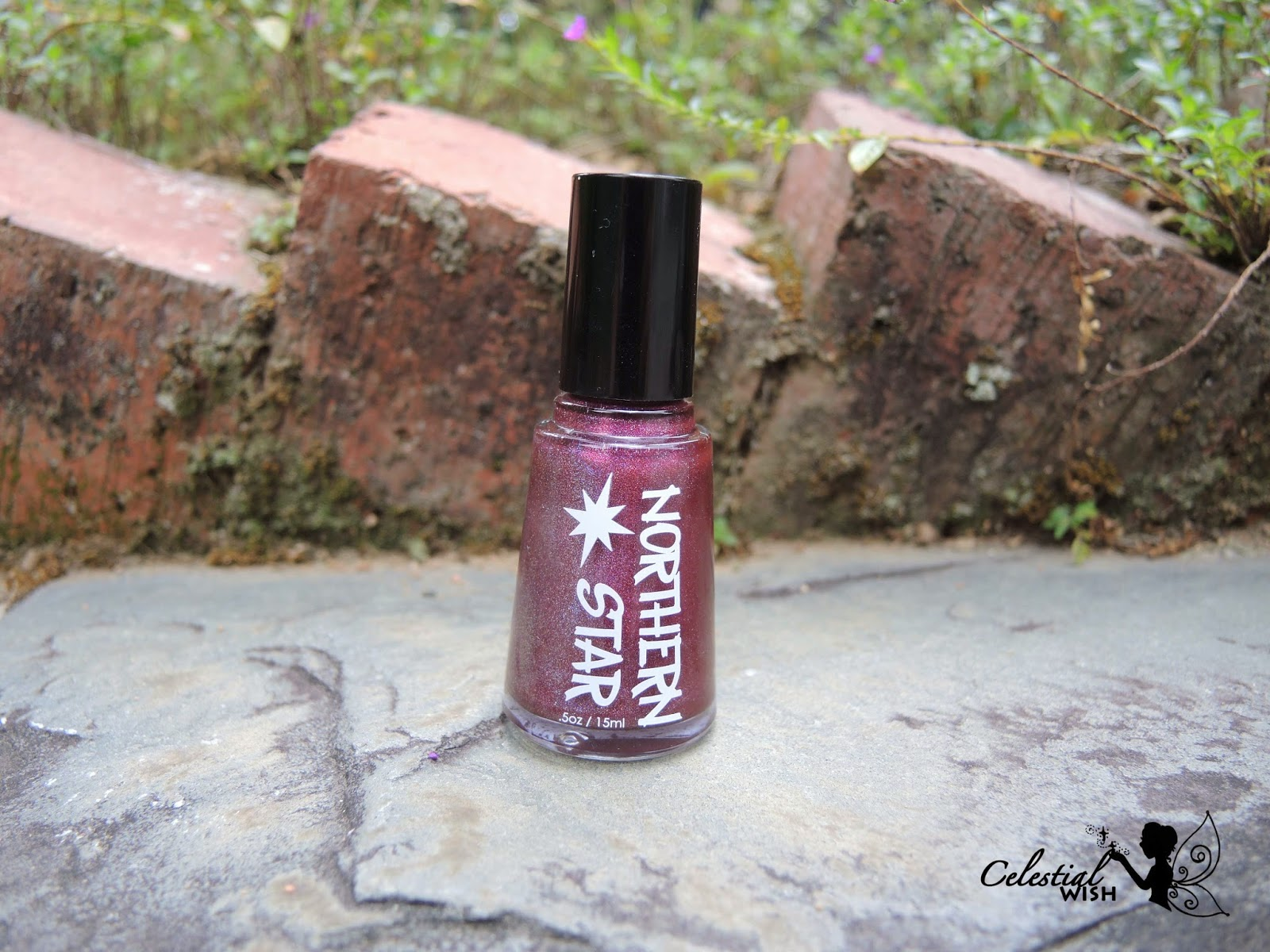Northern Star Polish's Berry Much In Love