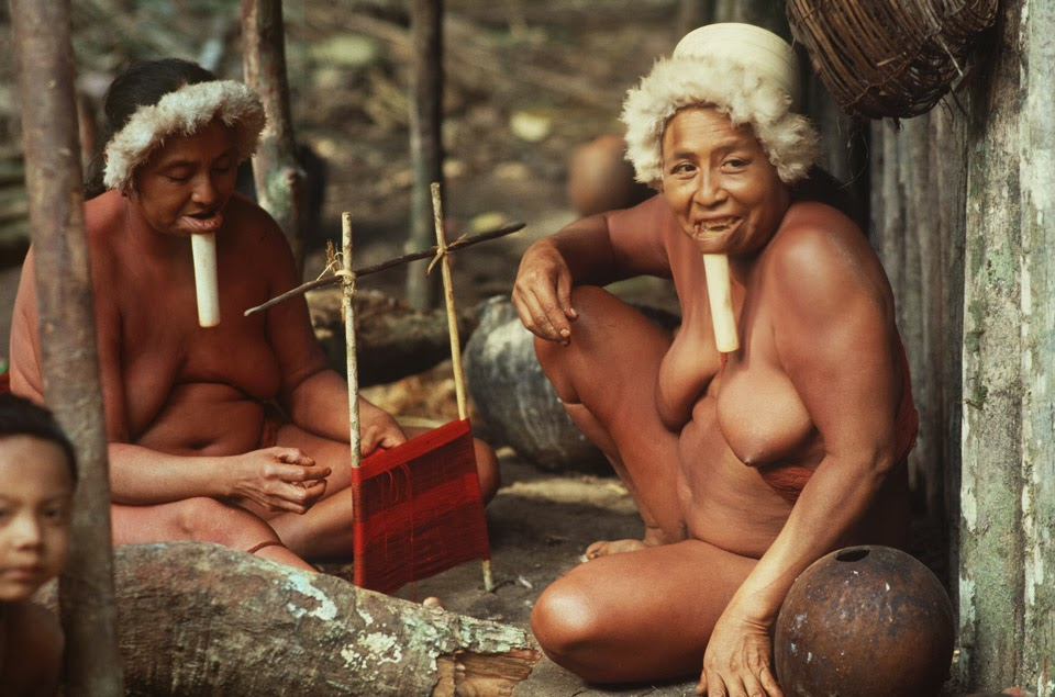Порно дикий амазонки — 13