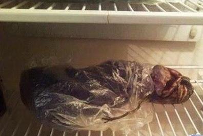 mayat alien dalam lemari es