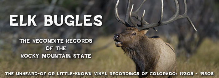 Elk Bugles