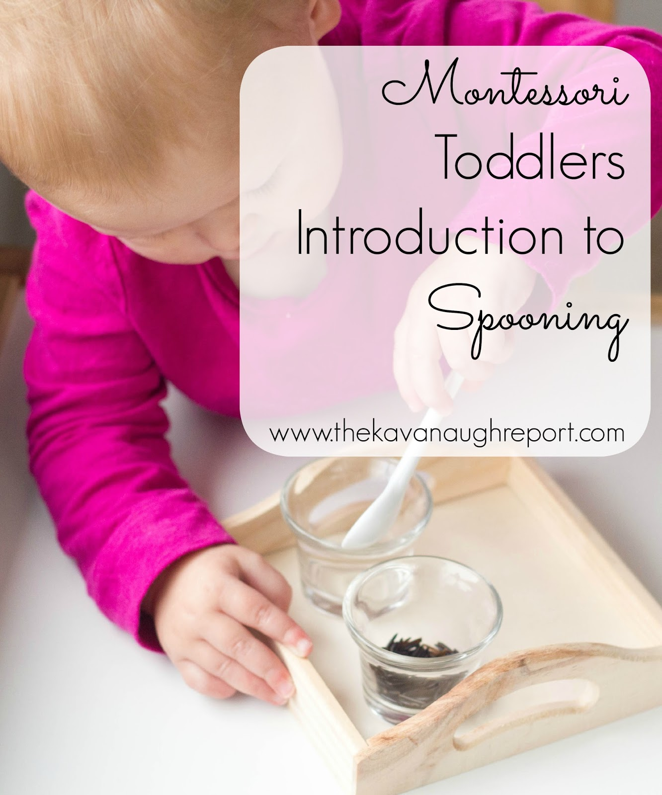 introduction to montessori This is a short video produced as part of the national education report to briefly introduce montessori education and the work of the montessori foundation.
