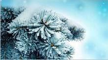 Sfondo invernale-06