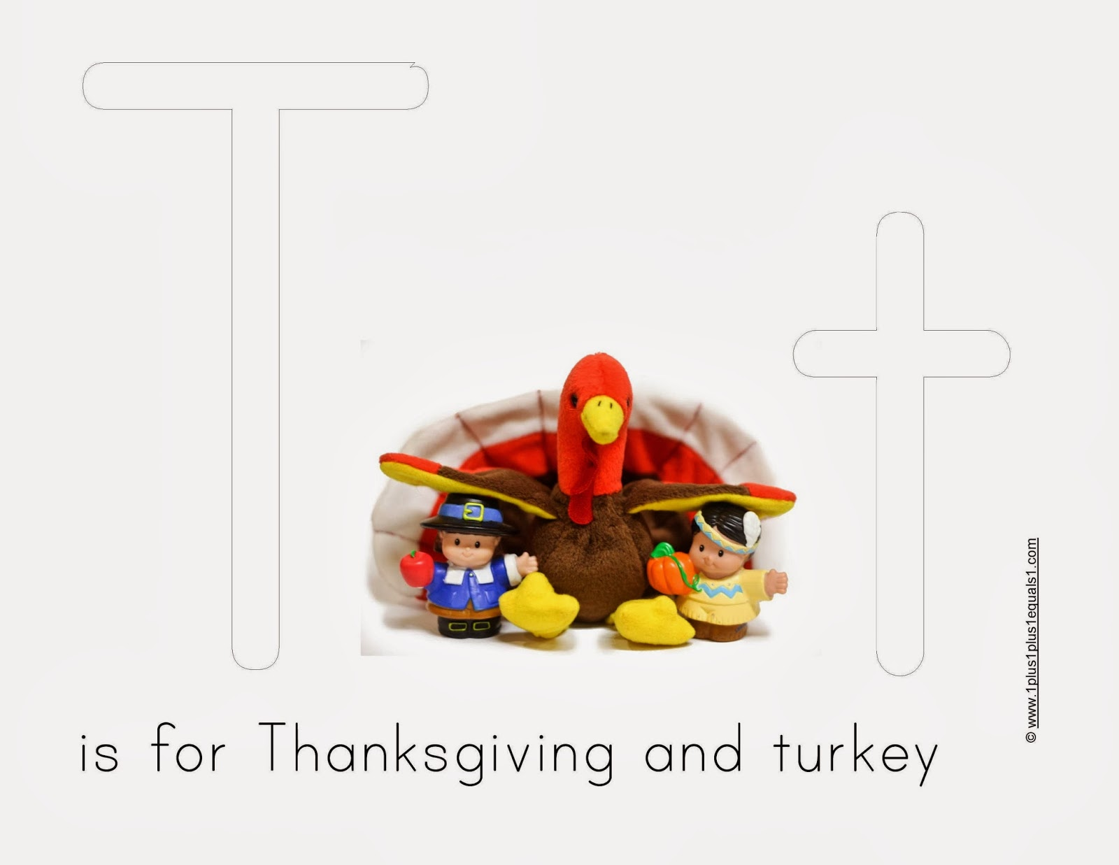 Forex companies in turkey