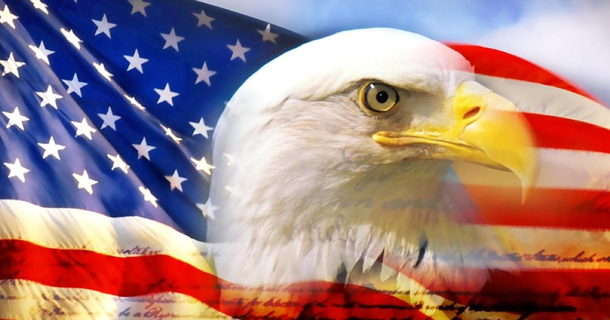 The Bald Eagle National Symbol Image Collections Meaning Of This