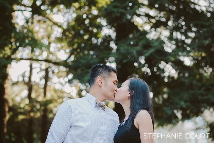 sonoma engagement photography