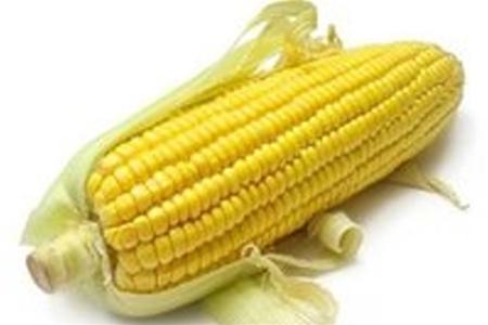 Кукуруза, история, полезные свойства, области применения
