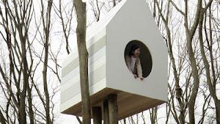 sangkar apartemen burung