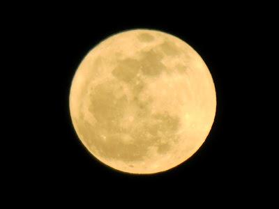 OCMD moon