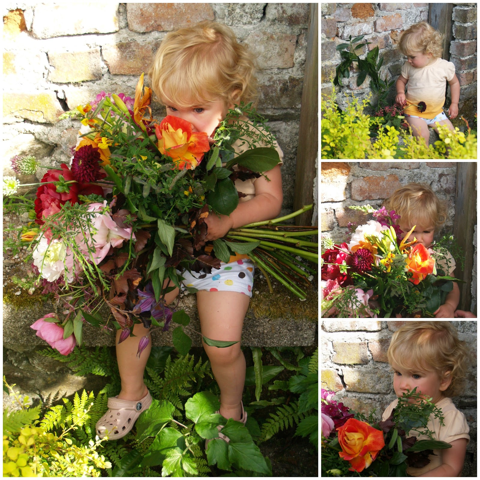 Flower Babies and a Special Little Friend