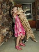 blog śmieszne koty: karate kot karate kot