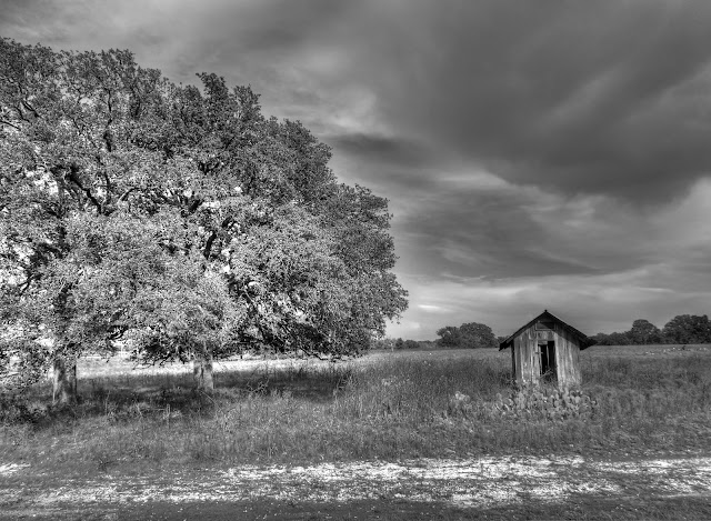 All alone... North Austin Texas Farm Shed HDR in Black and White