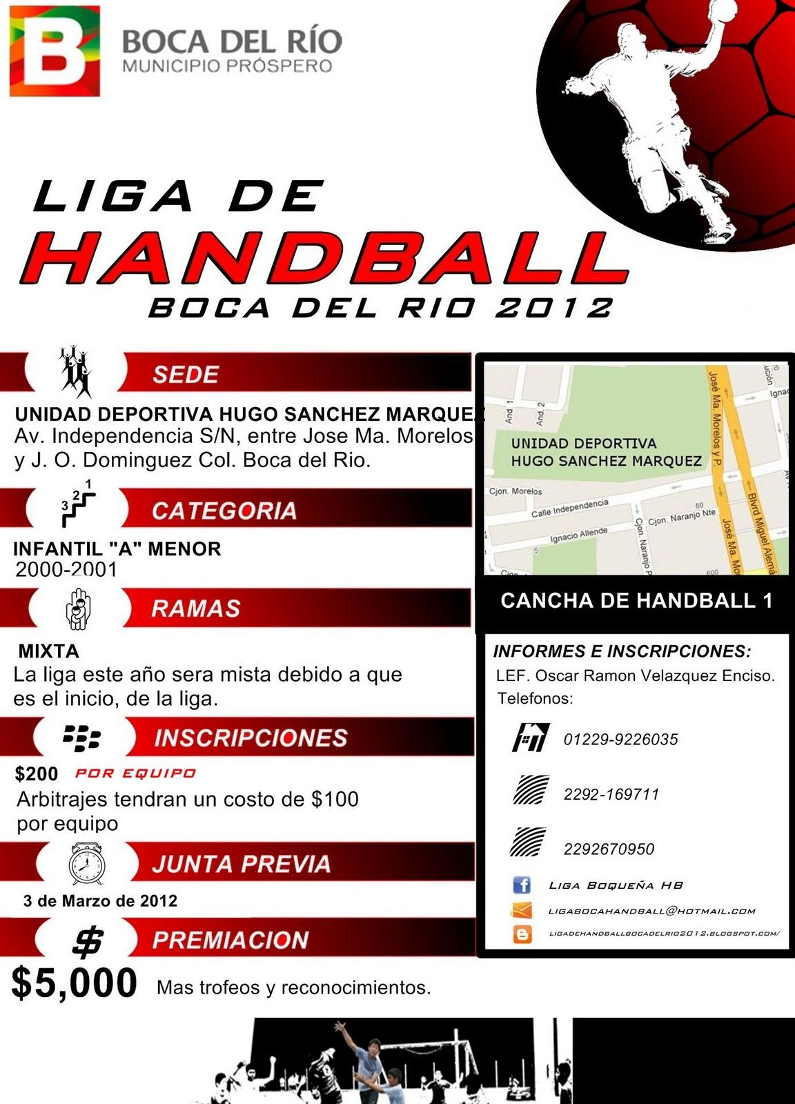 handball ligen