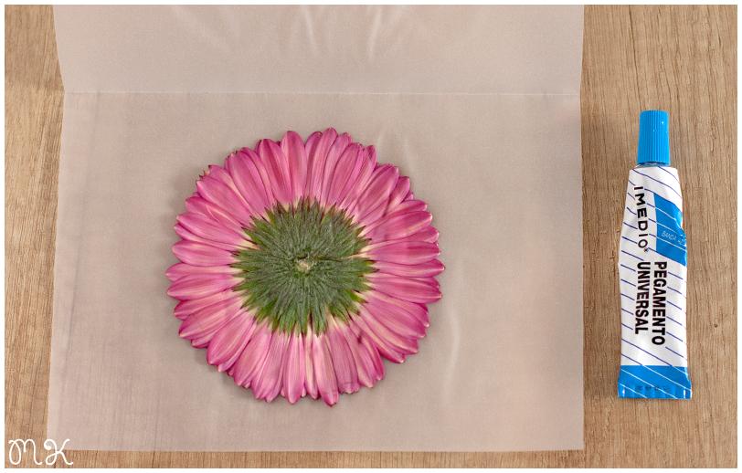 flor y pegamento