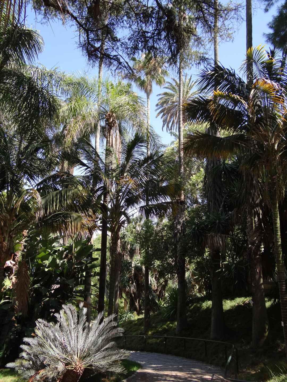 Jardin de b signoles jardin d 39 inspiration le jardin for Camping le jardin botanique limeray