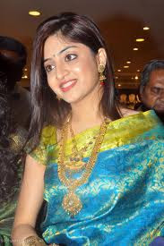 Kerala actress silk saree photos