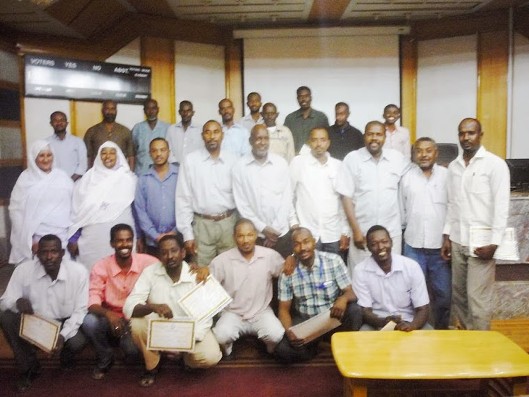 شركة توزيع الكهرباء السودانية