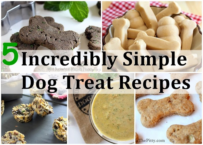 5 Incredibly Simple Dog Treat Recipes Handy DIY