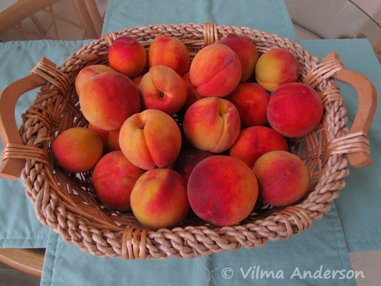 Basket full of peaches