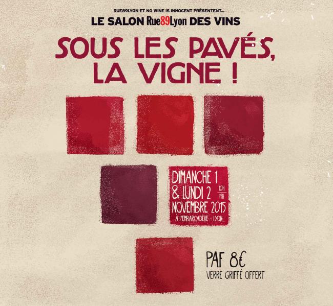 Clos des cimes l 39 autre go t des vins de la vall e du for Salon du vin lyon