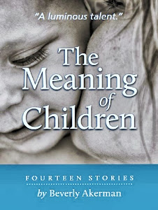 The Meaning of Children e-book