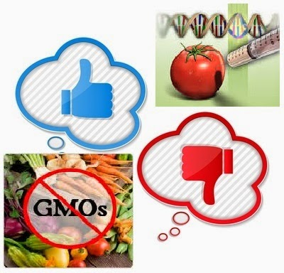 persuasive speech outline on genetically modified foods Dissertation sur la guerre juste persuasive speech on genetically modified foods custom thesis development dissertation.
