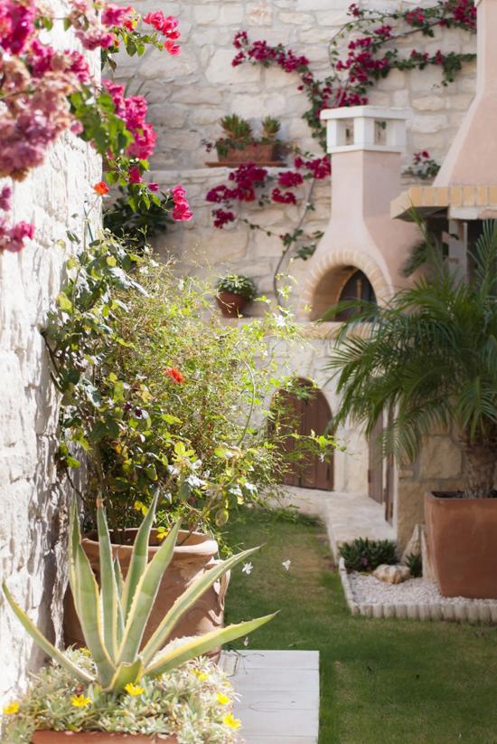 10 Garden Ideas to Steal from Greece via Gardenista ©Eleni Psyllaki