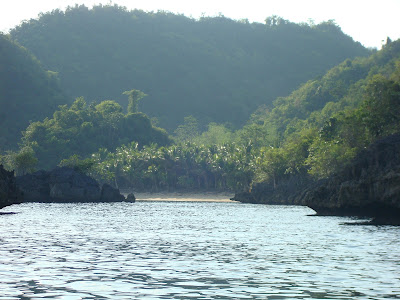 white sand island in Sipalay City