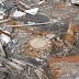 Τι υπάρχει στον πάτο της πιο βαθιάς γεώτρησης στον κόσμο που έσκαβαν οι Σοβιετικοί για 24 χρόνια; (photo/video)