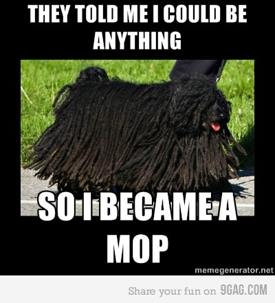 funny animal pictures, funny animal memes, they told me i could be anything, animal memes, animal pictures with captions
