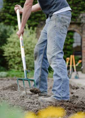 Gardening digging in soil with a garden fork