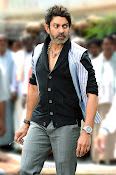 Jagapathi Babu in Balayya's Legend Movie-thumbnail-4