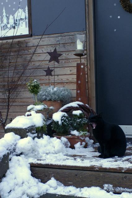Ein schweizer garten das adventsfenster - Winterlandschaft dekoration ...