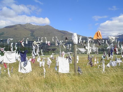 The Cardrona Bra Fence of New Zealand