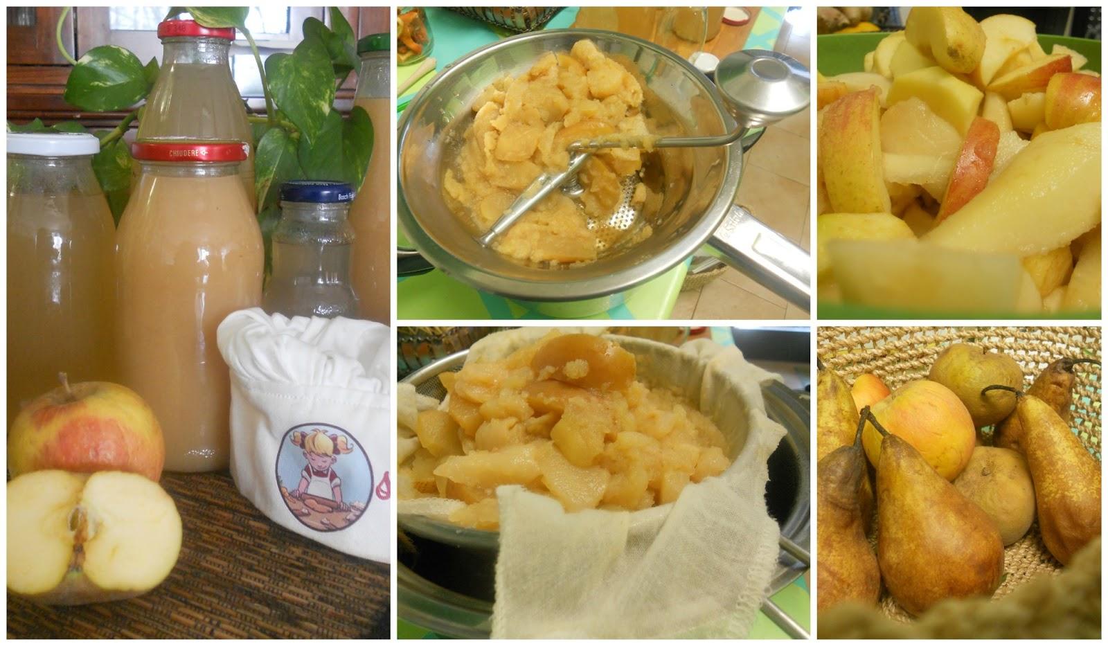 Fatto in casa succo di frutta alla pera biologico fatto for Succhi di frutta fatti in casa