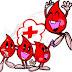 Manfaat Donor Darah bagi Tubuh