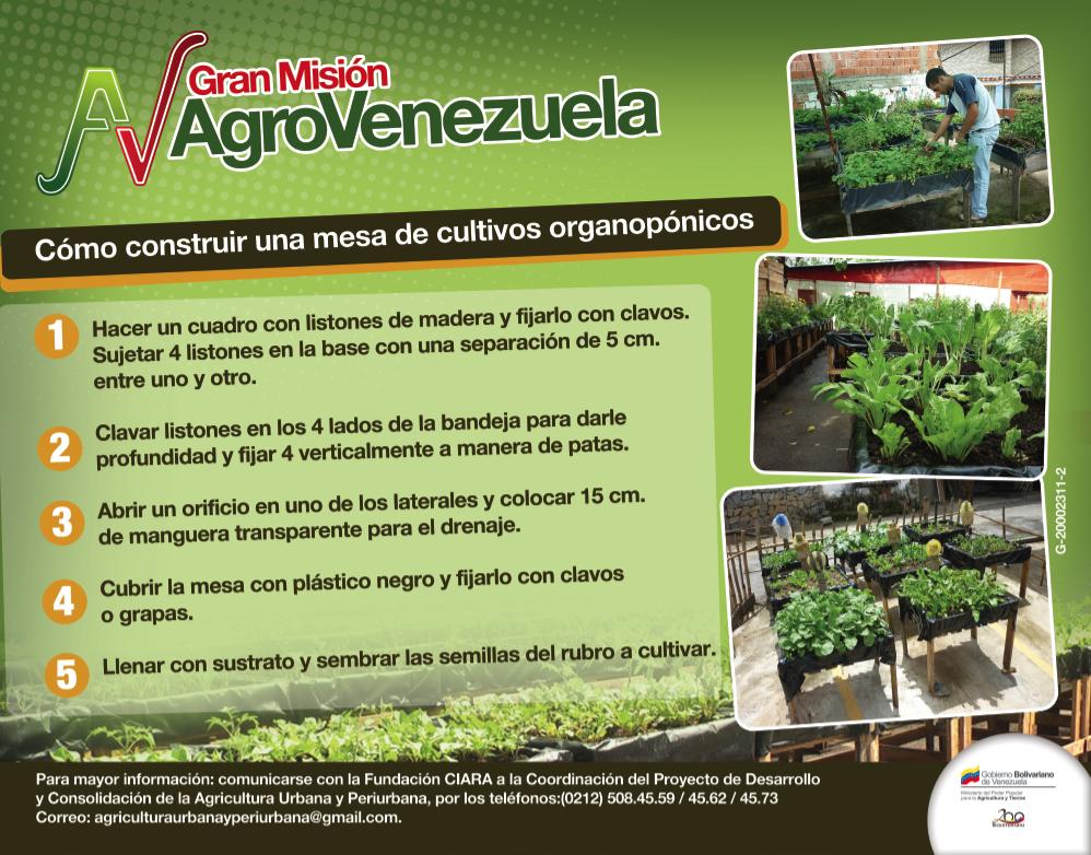 Cómo construir una mesa de cultivos organopónicos | Prensa ...