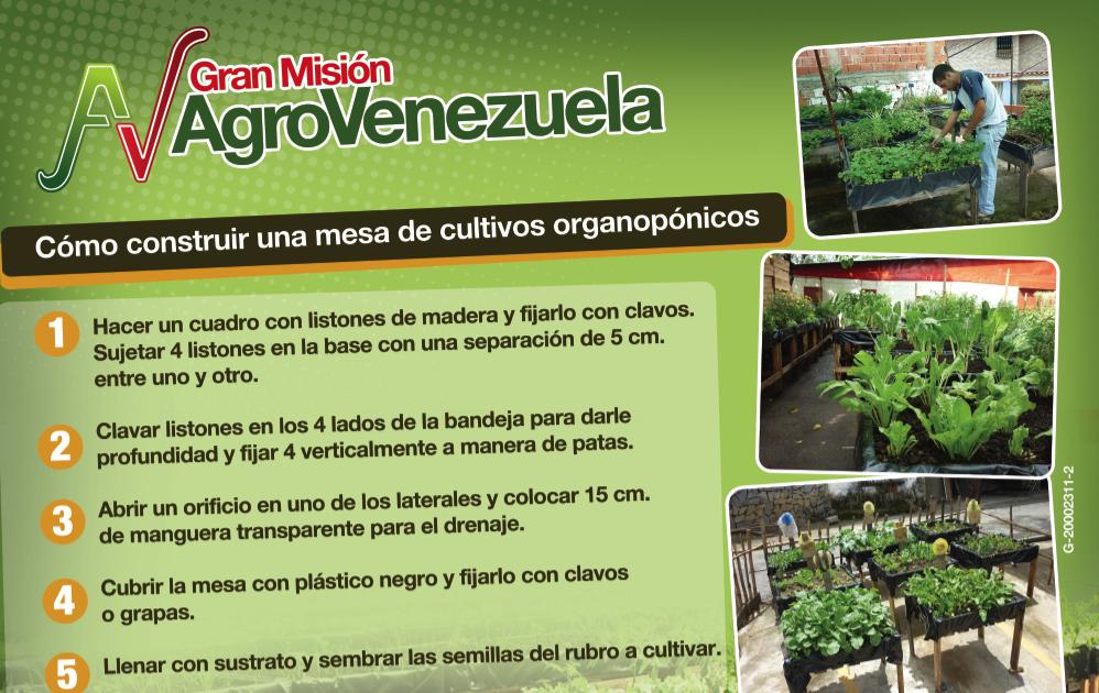 Prensa mat c mo construir una mesa de cultivos organop nicos for Construir mesa de cultivo