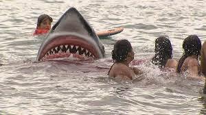 Pegadinha Tubarão