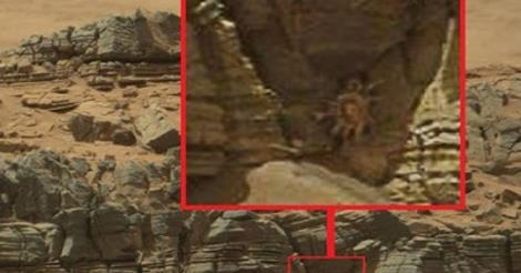 """المركبة """"كيريوسيتي"""" التابعة لناسا تلتقط صورة تأخذ الأنفاس من كوكب المريخ !"""
